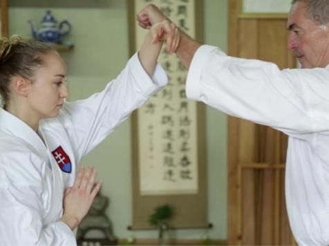 Okinawa  ×  Karateist